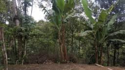 Título do anúncio: Terreno espetacular, com vista do vale, nascente, arborizado, escriturado e com acesso fac