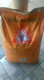 Semente Capim Mombaça Certificada