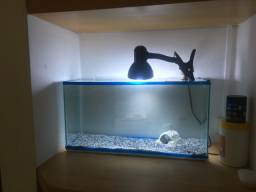 Título do anúncio: aquário de 40 litros