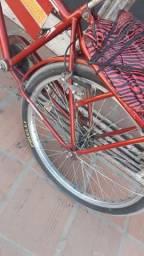 Bicicleta cargueiro