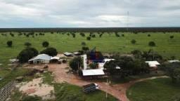 Fazenda à venda, por R$ 250.000.000 - assentamento - Ribeirão Cascalheira/MT