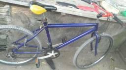 Bicicleta 135