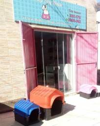 Alugo Pet shop(banho e tosa)