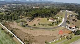 Área para alugar em Piraquara