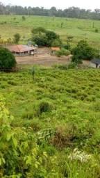 Fazenda São Félix do Xingu-Pará