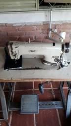 Maquina de costura industrial reta