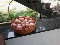 Ovos 100% caipira 9 reais duzia