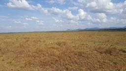 Fazenda de 4000 hectares no Bonfim/RR, ler descrição do anuncio