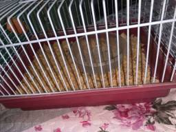 Título do anúncio: gaiola para hamister