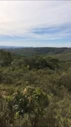Vendo área de terra com 29 hectares