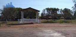Sítio/Haras em Cuiabá com 30 baias para cavalos, 450 mts de frente de rodovia