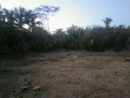 Vende uma propriedade município de Miguel Alves