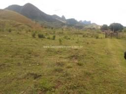 Fabio Paes Imóveis - Fazenda 116 alq geométricos com capacidade 700 bovinos