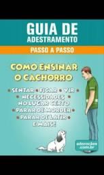 Aprenda a adestrar o seu cão