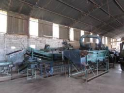 Lavadora de Batatas no Sul de Minas MG