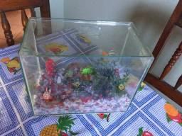 Vendo aquário decorado ,olhe a descrição!