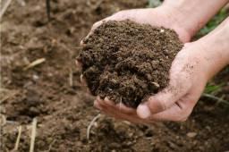 Vendo esterco bovino com alto teor de produtividade para suas plantas