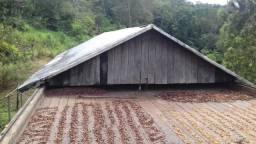 Fazenda à venda, Área Rural de Ilhéus - Ilhéus/BA