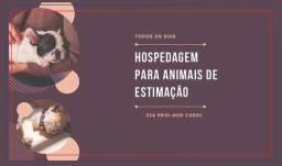 Hospedagem de animais