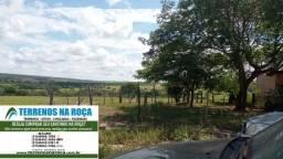 Título do anúncio: Fazenda em Abaete/MG 76 hectares,Terra de cultura com água corrente