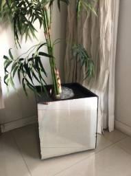 Vaso espelhado+ planta