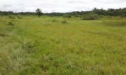Fazenda com 600 hectares em São Luiz do Anauá. ler a descrição do anuncio