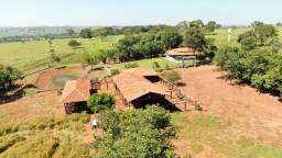 Trindade - Fazenda - Área Rural, Trindade-go