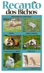Coelhos e roedores