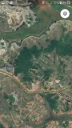 Area Frente Pista na Cetrel 600.000 m2