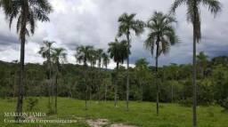 Fazenda para Gado em Rubiataba!