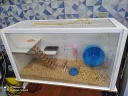 Terrário para animais (hamster, tartaruga, etc)