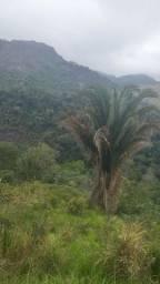 Título do anúncio: Urgente barato chácara em viana  4 mil metros