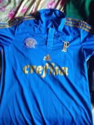 Vendo camisa do Palmeiras tamanho m nunca usada