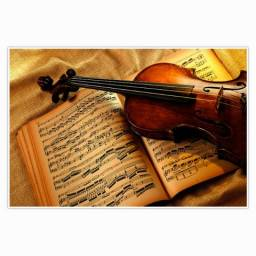 Curso de Violino