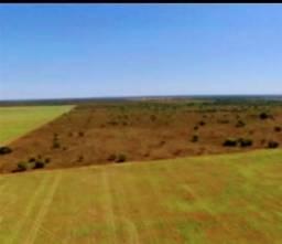 Fazenda em piun to 400 milhões