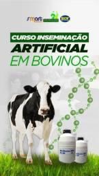 Título do anúncio: Curso de Inseminação Artificial em Bovinos