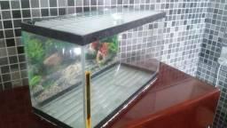 Aquario 14,5 litros