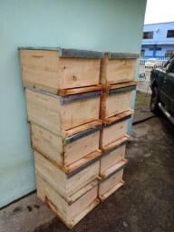Caixas de abelhas