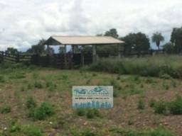 Fazenda próximo da água finíssima com 530 hectares