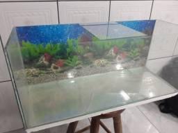 Título do anúncio: Aquario 68x30x25 - 49 litros