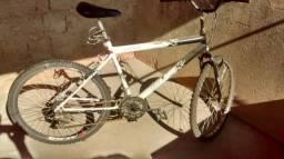 Bicicleta v.t