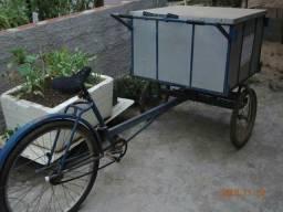 Bicicleta triciclo