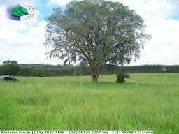Fazenda Holambra 4 km Rod. Raposo Tavares - Negócio de ocasião