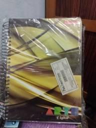 Um lote de caderno de 200×275 ,15e20materia. kit com 27 cadernos