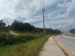Terreno na avenidas das Flores- 25 Hectares
