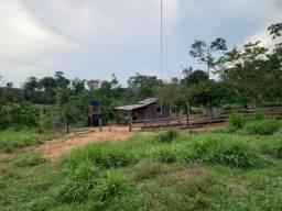 Título do anúncio: São 21 alqueires/45 km de machadinho do Oeste Rondônia