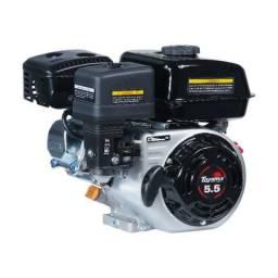 Motor a Gasolina Toyama TF55F1
