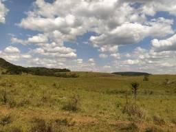 Campos, Fazendas, Sítios - Diversos tamanhos e finalidades: Pecuária, Agricultura.