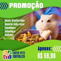 Combo Simples Russo