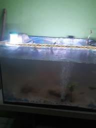 Vendo aquário 40/por 60 ligar *